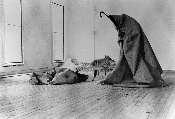 Joseph Beuys,  I Like America and America Likes Me , 1974. Performance/Installation.