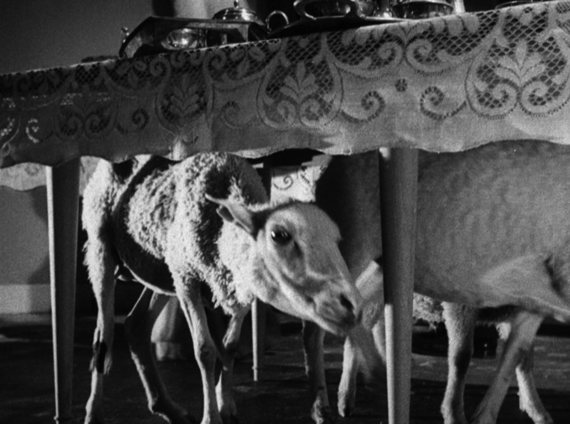 Luis Bunuel's  The    Exterminating Angel  (1962)