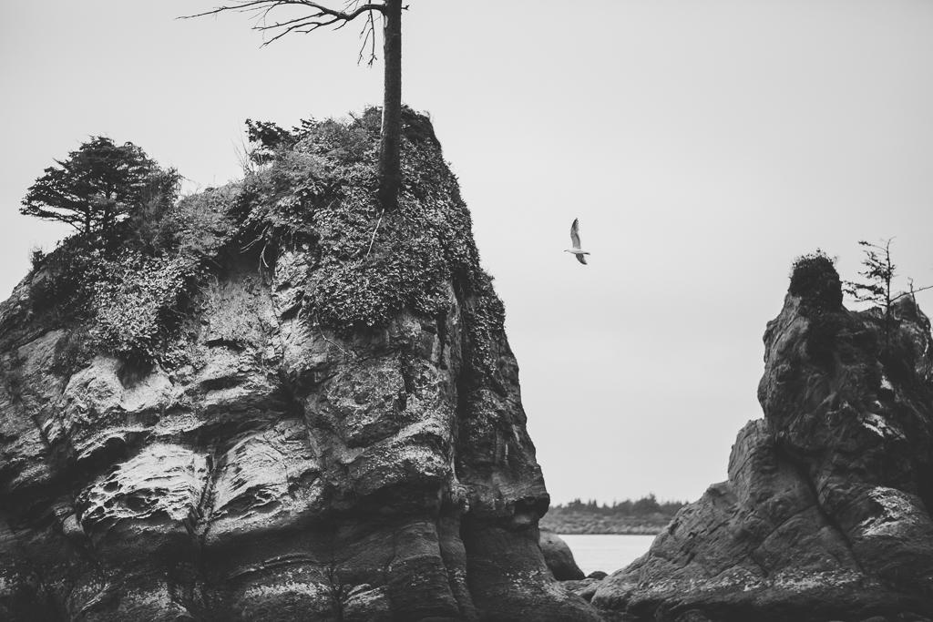 Portlandblog-49.jpg