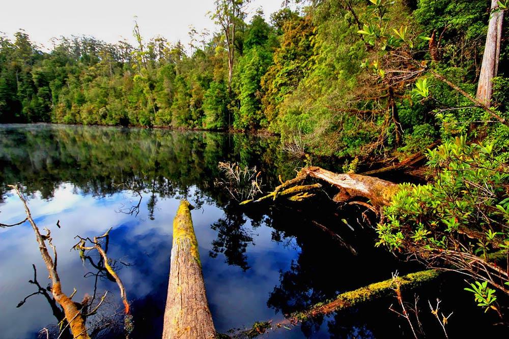 lake-chisholm-2.jpg
