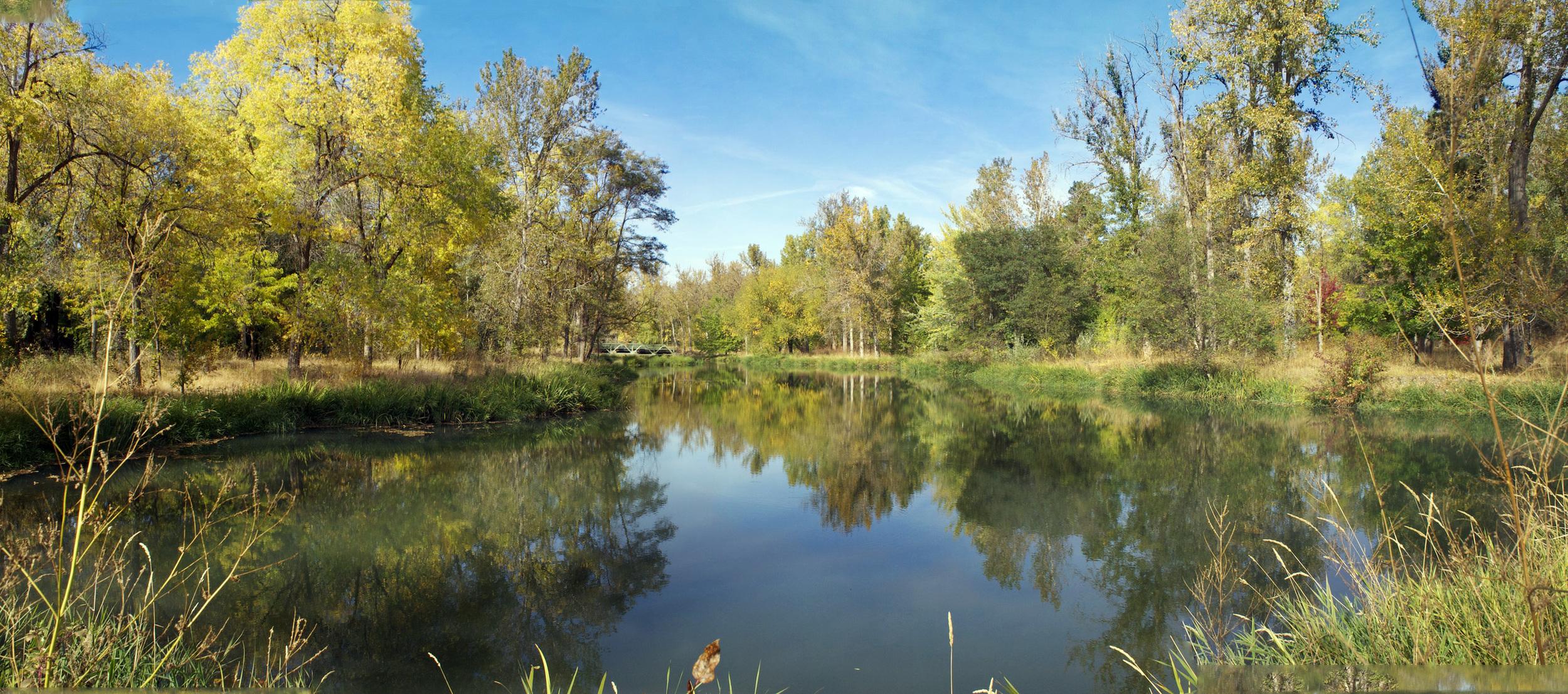 PondPan, 10-9-dkr pond.jpg