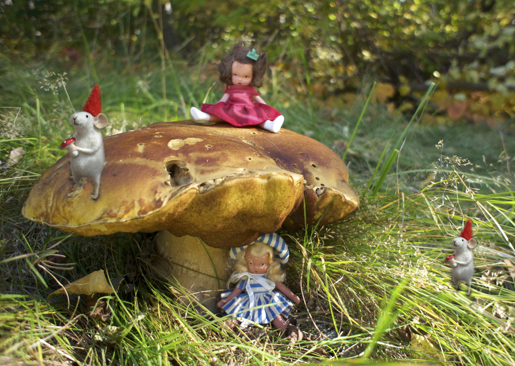 Storybook dolls & FairyGnome Rats playing w a Boletus.jpg