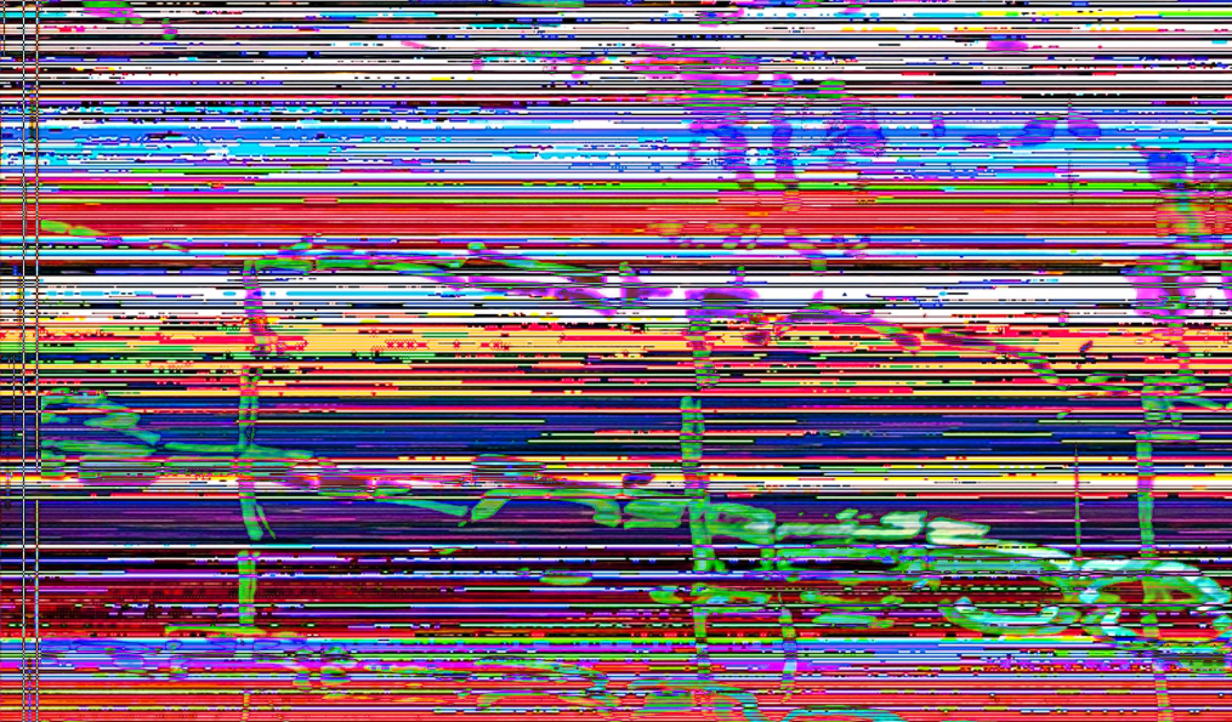 Untitled-8.2.jpg