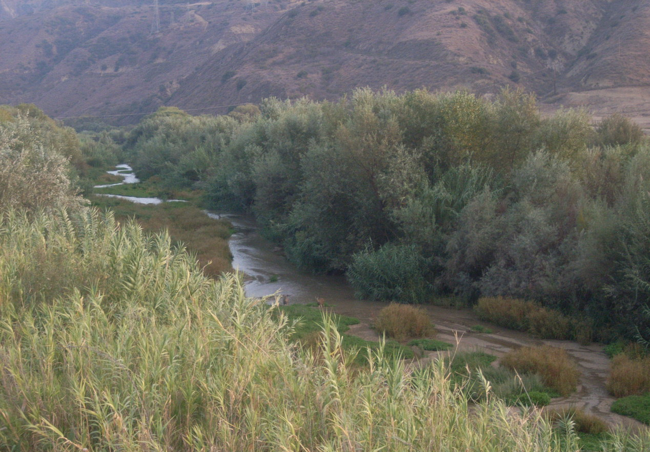 The BEAUTIFUL Meandering and Undeveloped SAnta CLAra River that Would be DREDGED, Filled, and COncreted by the Proposed Development of OVER 20,000 homeS