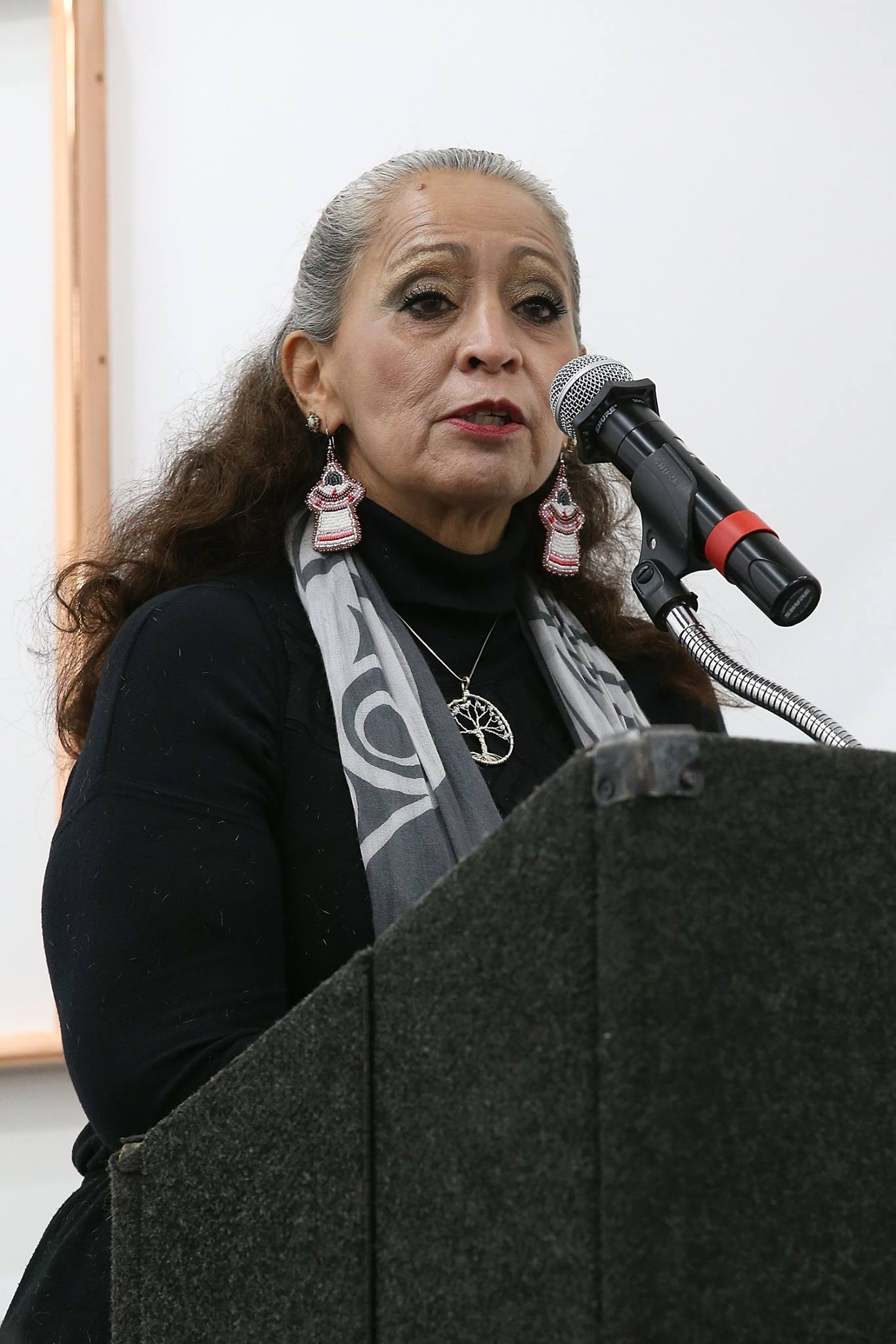 Historian and Standing Rock Sioux tribal member, LaDonna Brave Bull Allard
