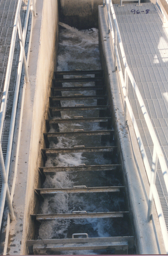 4.Fish Ladder to Be Replaced.jpg