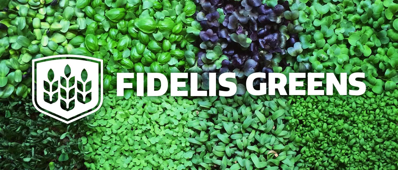Fidelis4.jpg