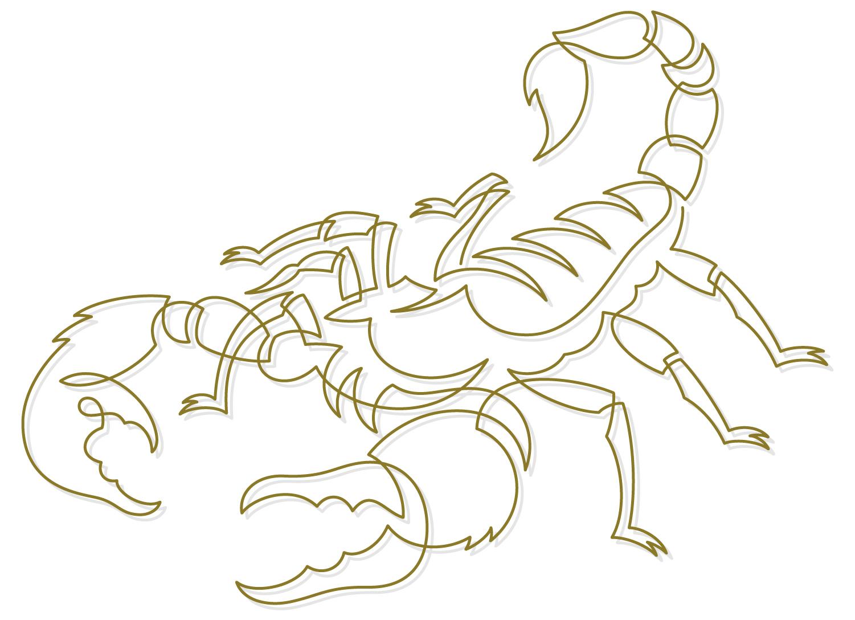Scorpion6.jpg