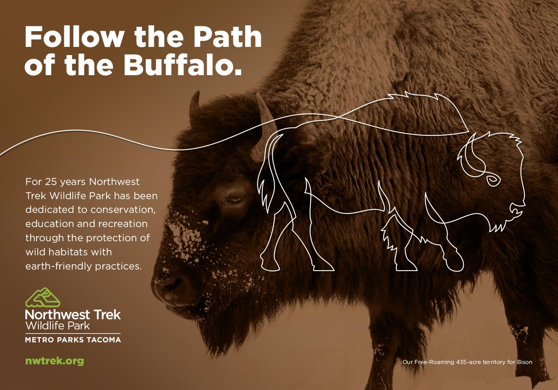 BuffaloAd.jpg