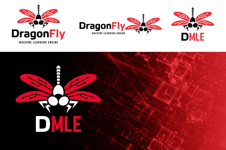 DML_Product.jpg