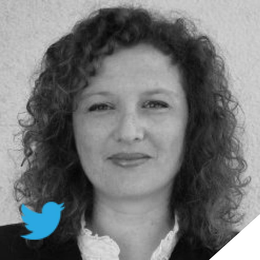 Yulia Reinshmidt  VP Behavior Change & Content,SetofMind