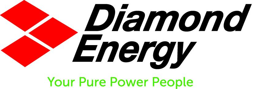 Renewable energy supplier