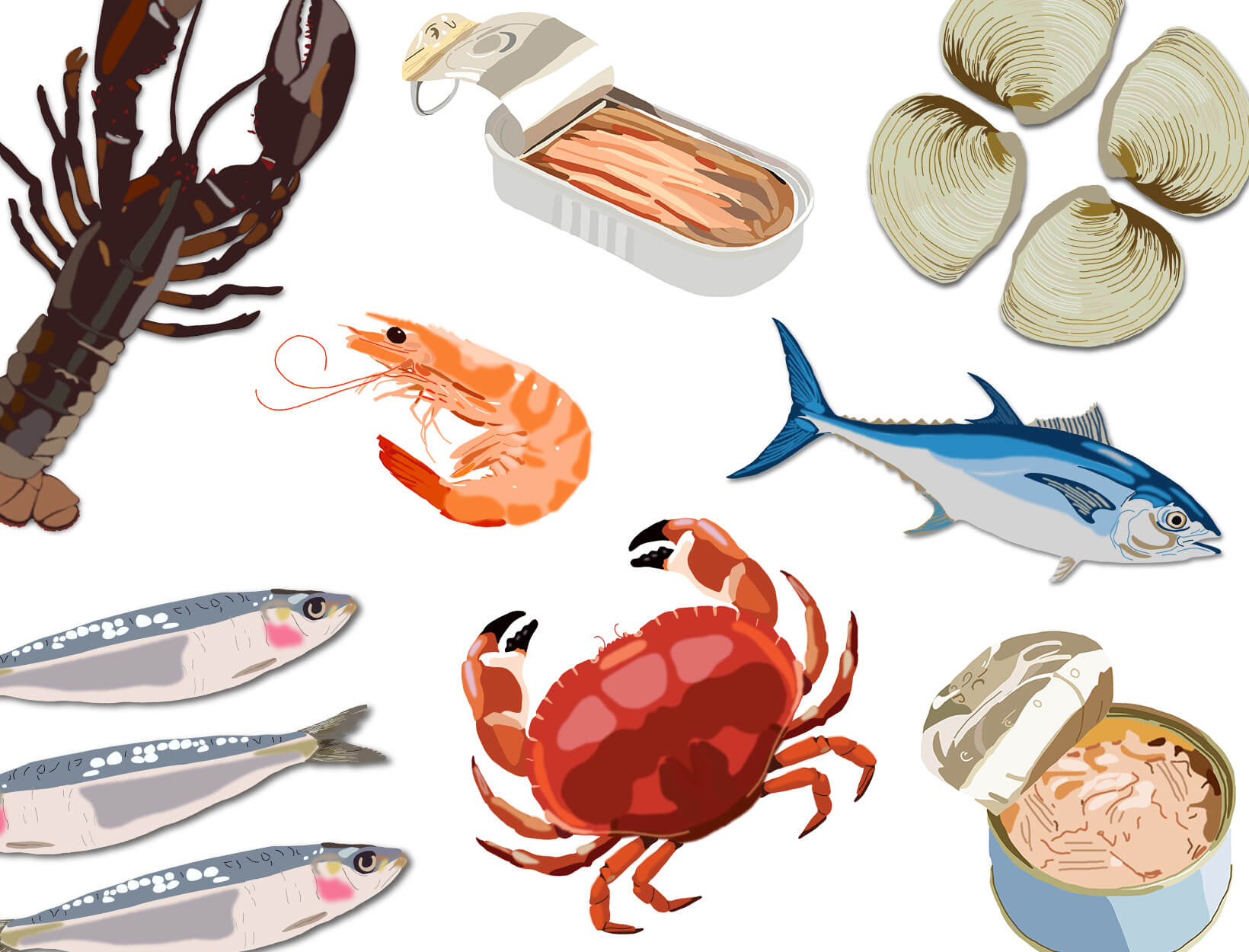 Australia's Sustainable Seafood Guide