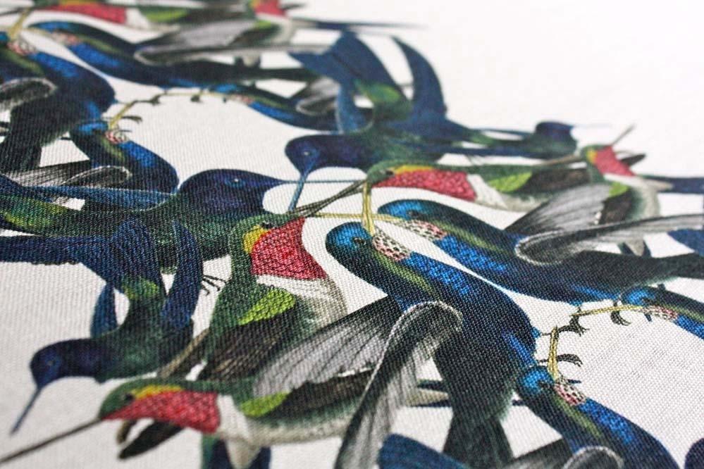 Hummingbird-Stripe.jpg