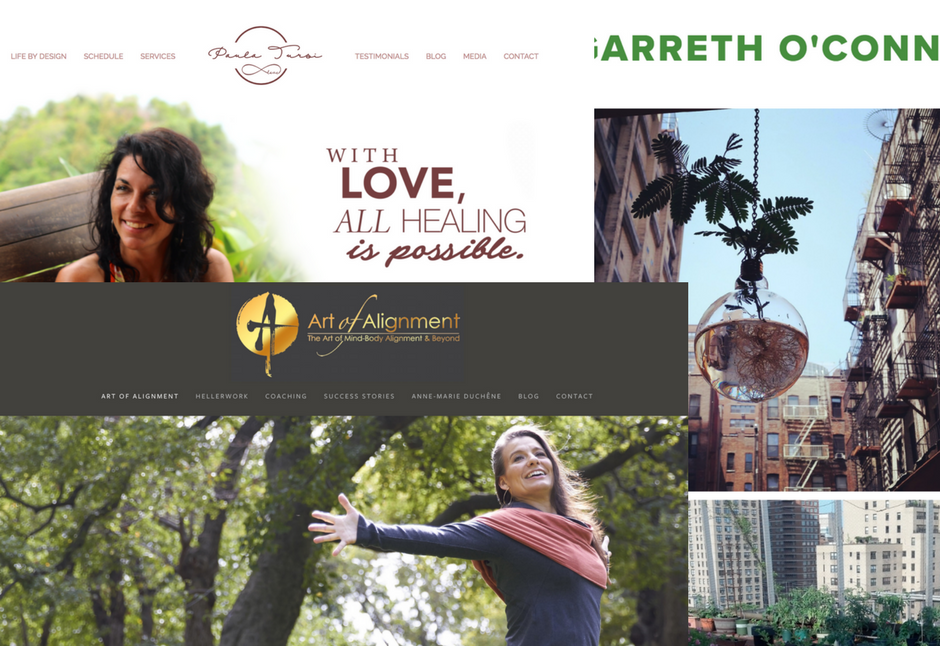 Website Design - One of Hedy's talents is creating beautiful, clean, simple, easy to navigate websites. She can also help organize and redesign marketing, operations and communications for small, developing businesses.Contact Hedy for more information and rates.