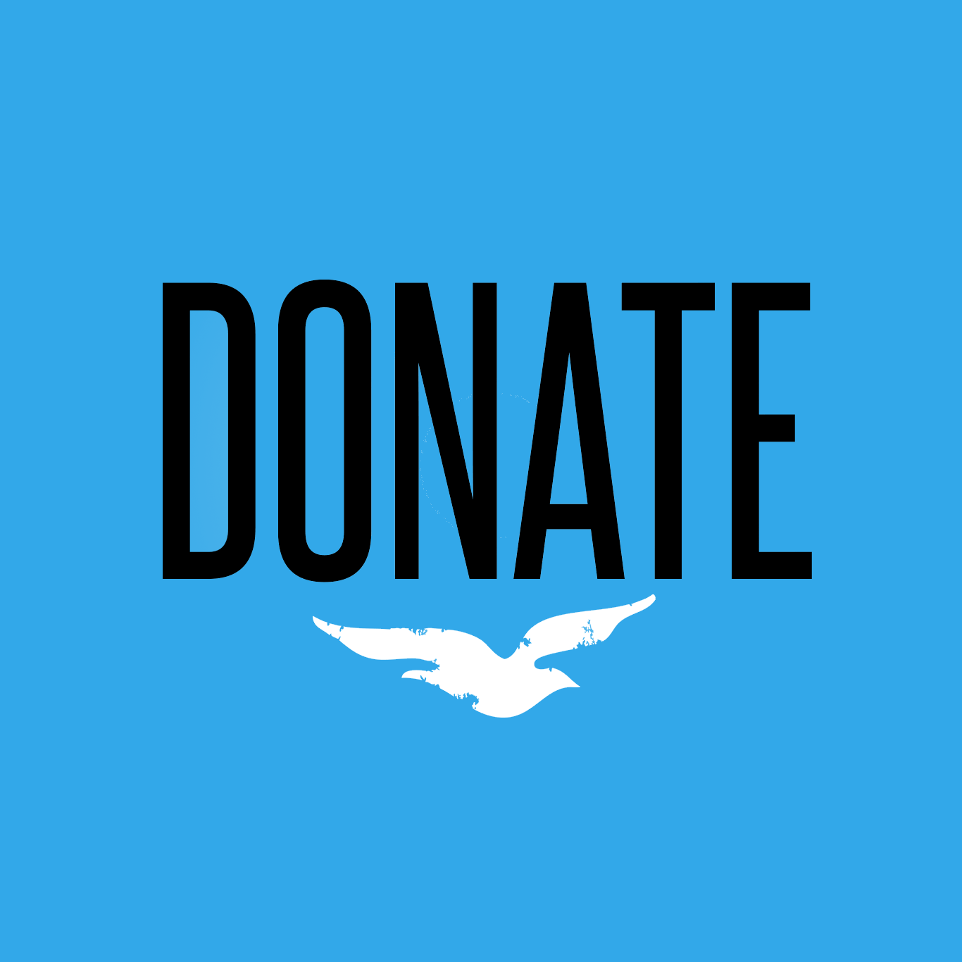 DonateSquareButton.png