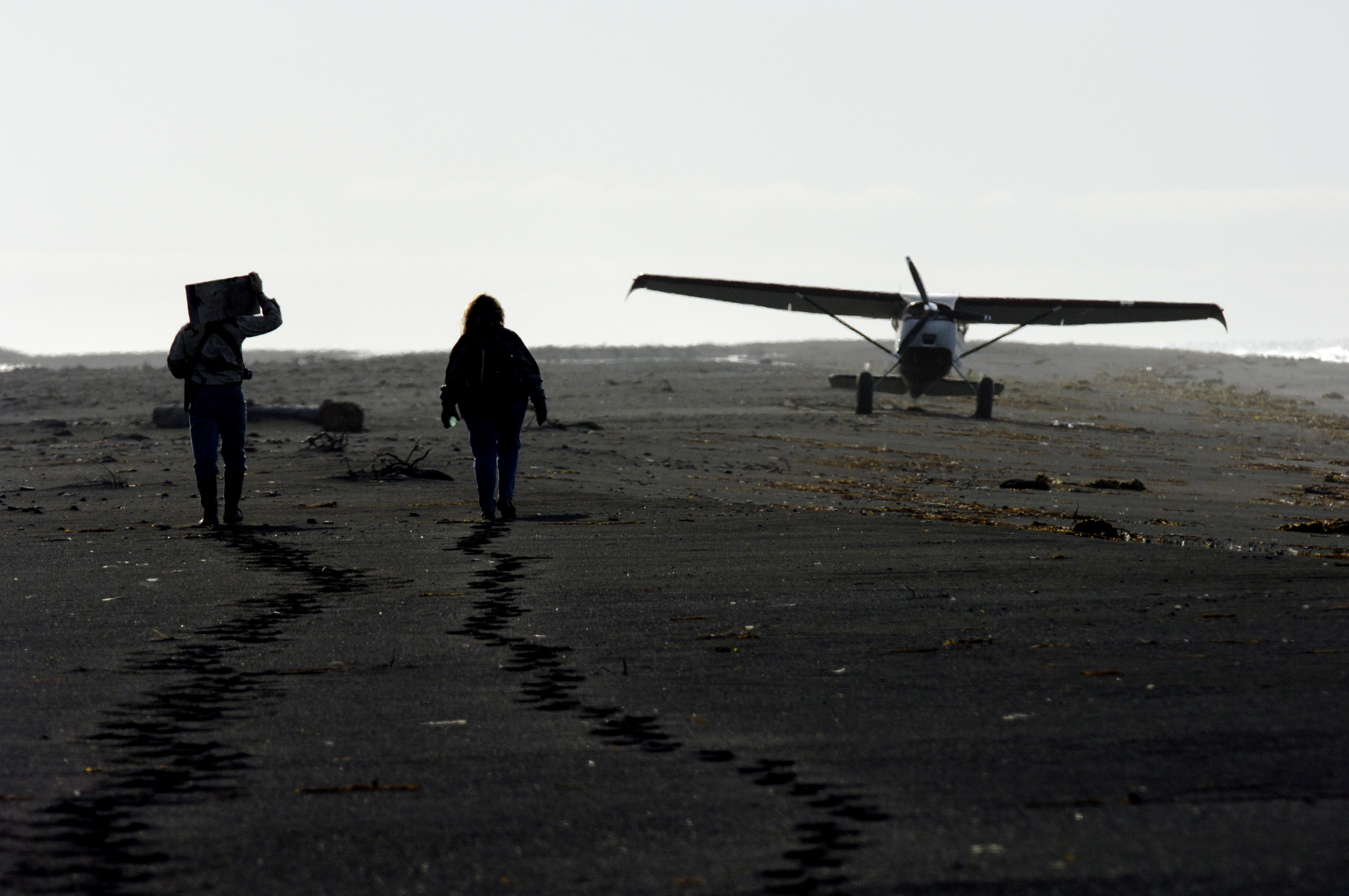 Bush plane on beach