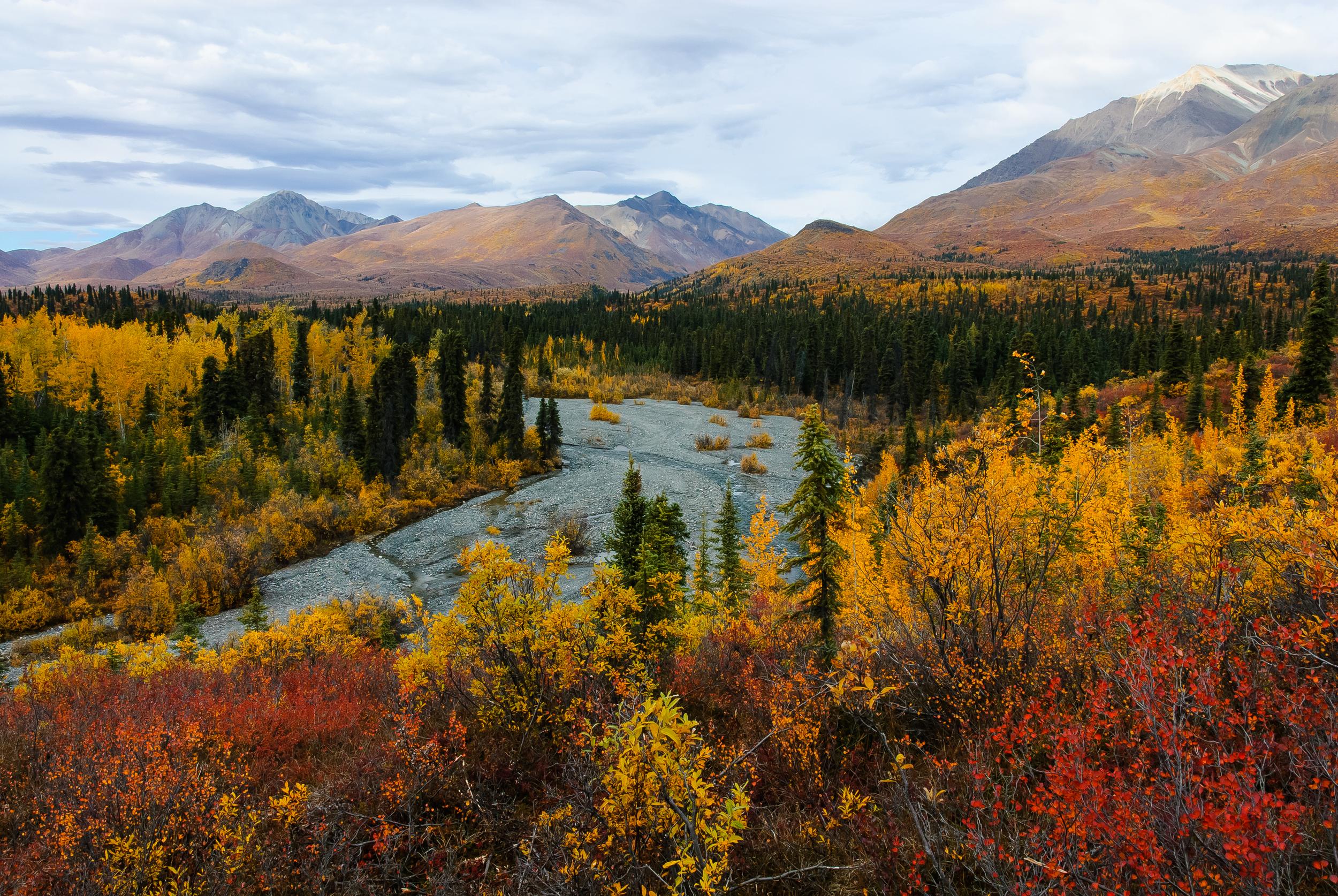 Trail Creek autumn