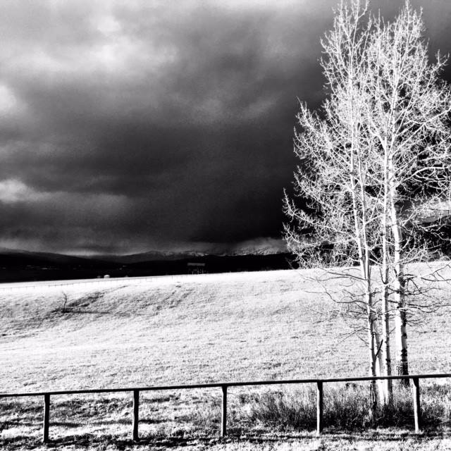 A stormy sky looking out from Pamela's studio.