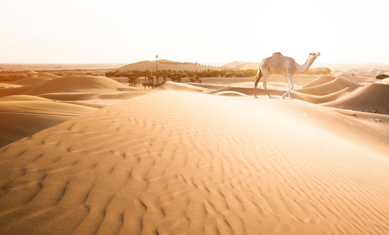 Dubai_Travel_Photographer_40.jpg