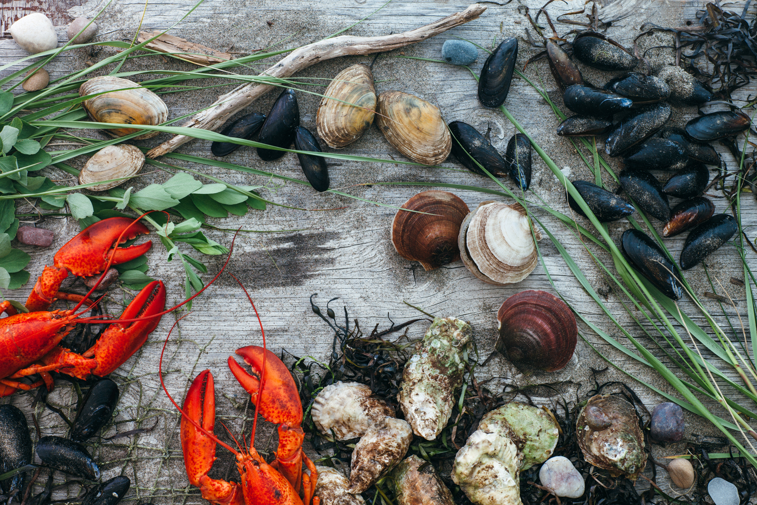 Client: Taste of Nova Scotia  Food styling:  Kathy Jollimore   Photography: Kelly Neil