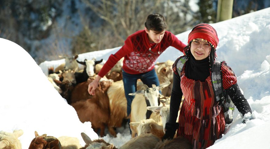 Shepherd girl Hamdu Sena from Rize, Turkey