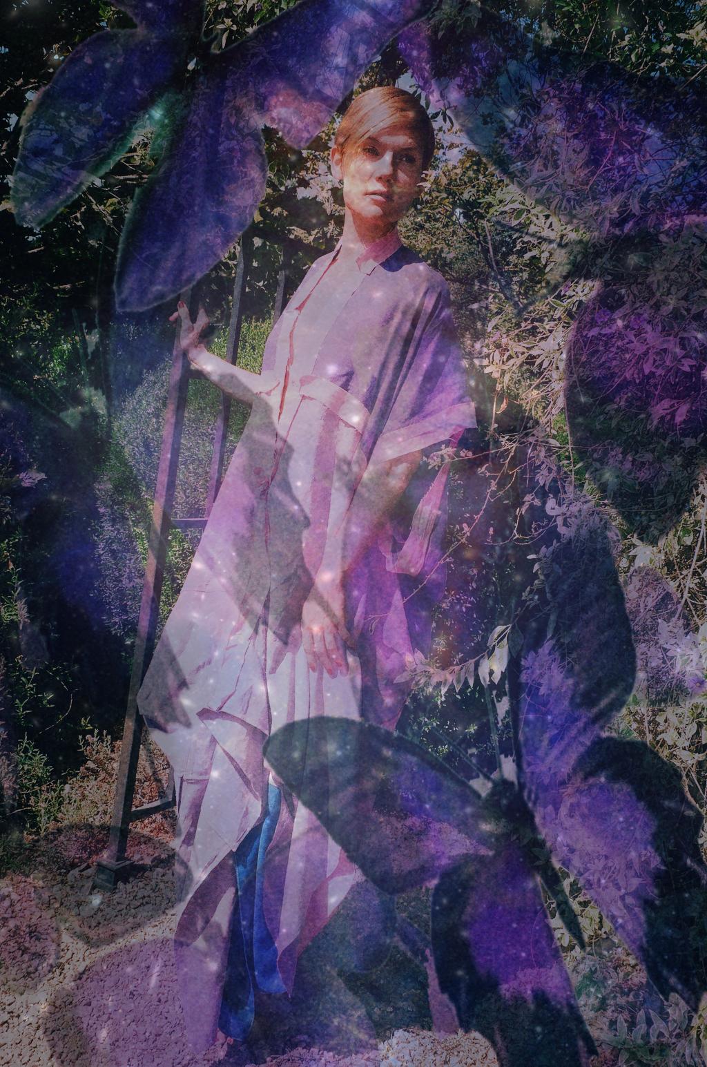 purple butterflies.jpg