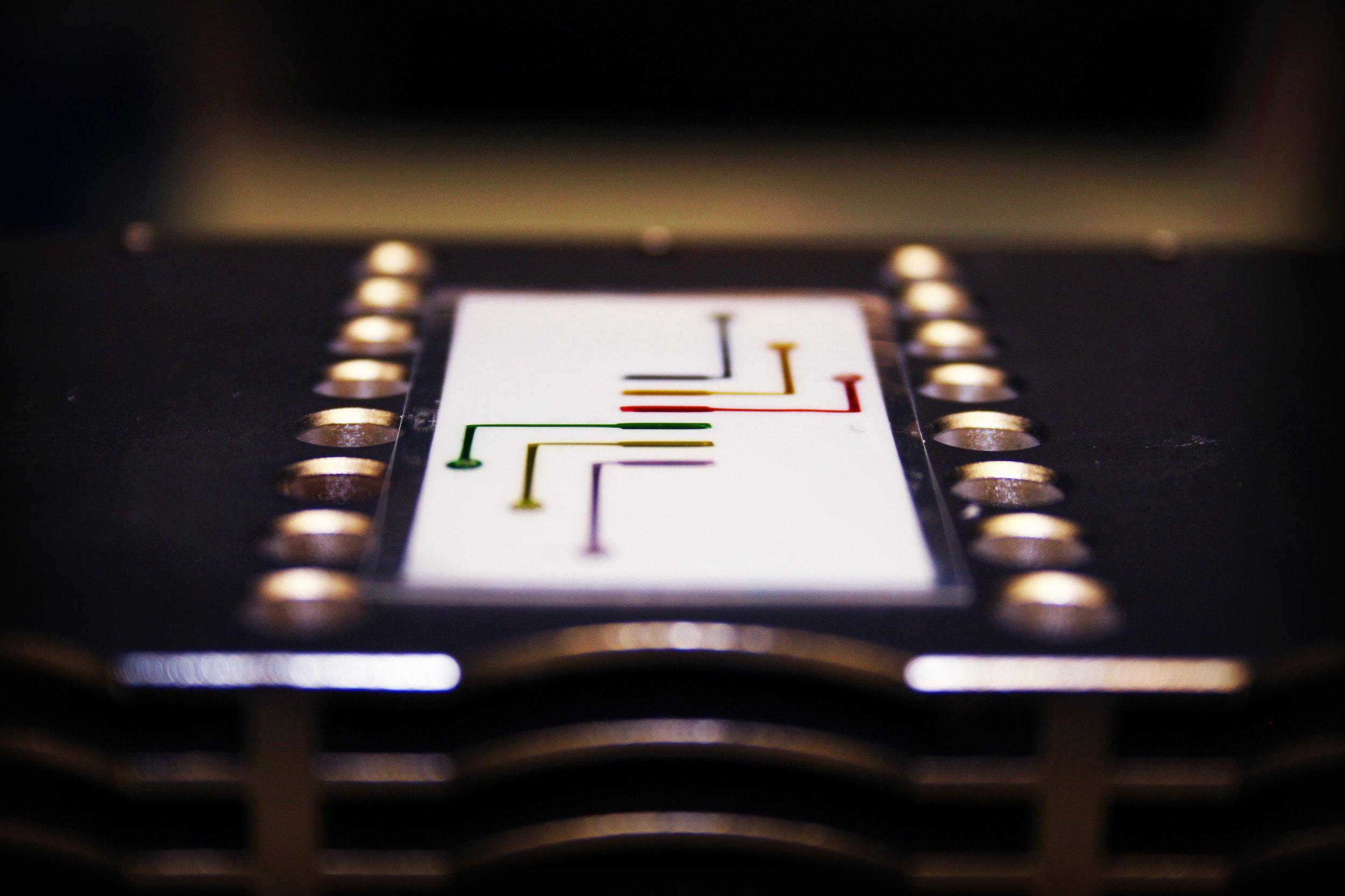 PCR-Tape.jpg
