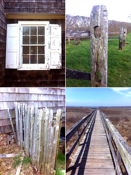 Textures of The Hamptons