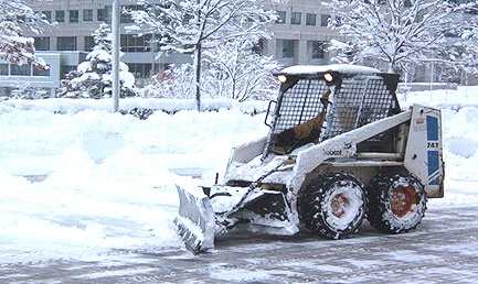 blog_4_snow_bobcat2.jpg