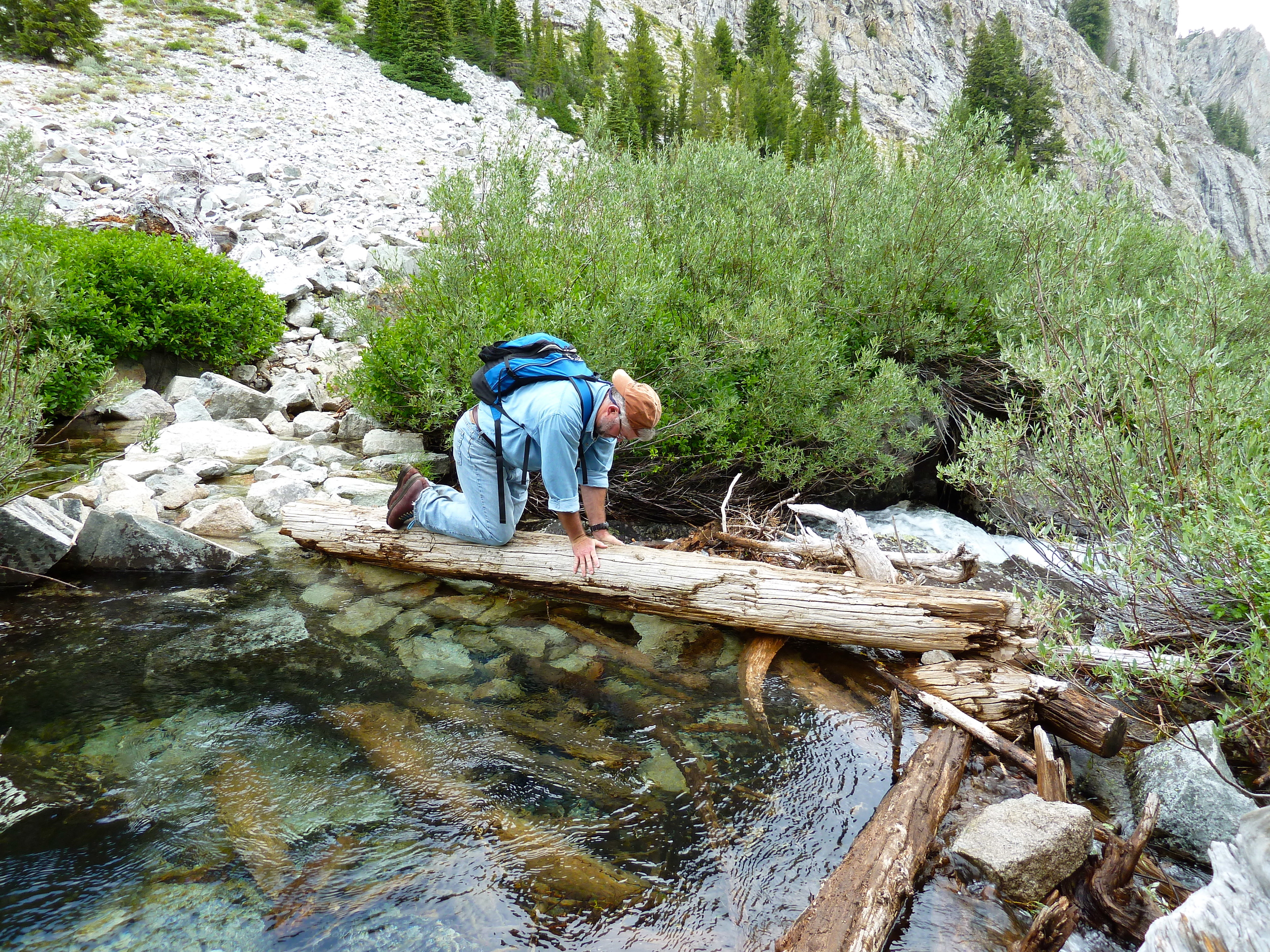 sawtooth wilderness stream crossing