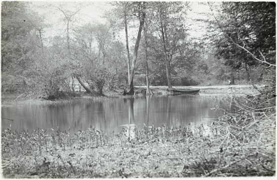 Bronx Park, circa 1880-1899. New York City Municipal Archives Collection.
