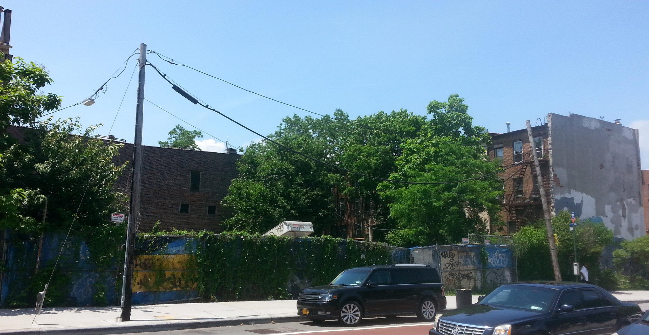 342-344 Nostrand Ave., Brooklyn, NY. Photo: Darryl Montgomery.