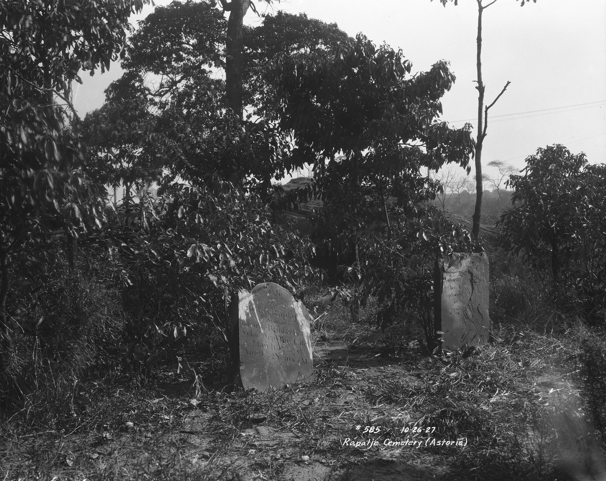 Rapalje Cemetery, Astoria, Queens, October 26, 1927. Borough President Queens Collection, NYC Municipal Archives.