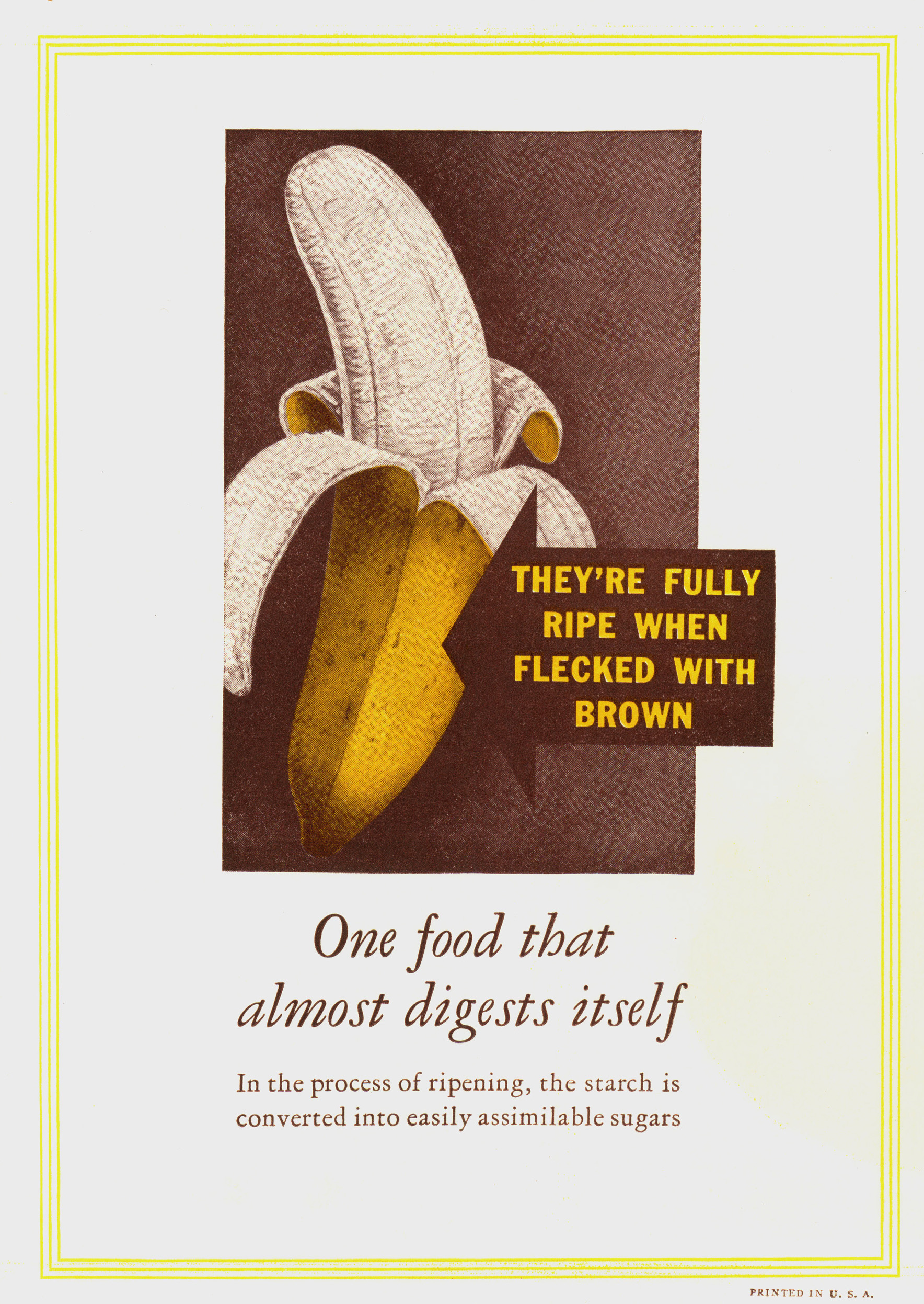 Answers to questions frequently asked about Bananas , United Fruit Company, ca. 1940. WPA Federal Writers' Project collection, NYC Municipal Archives.