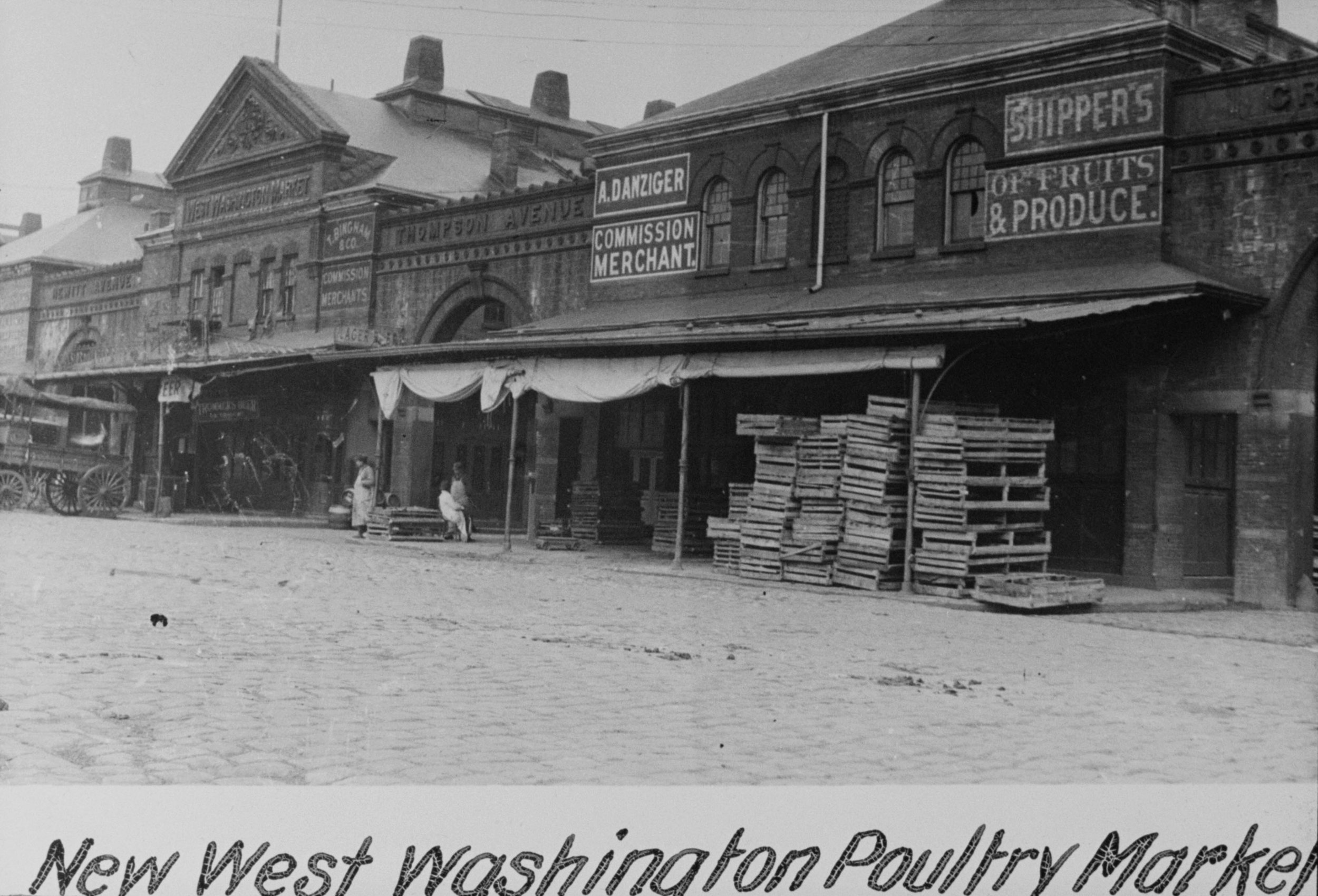 """New"" W Washington Poultry Market, undated. Department of Marine and Aviation Collection, NYC Municipal Archives."