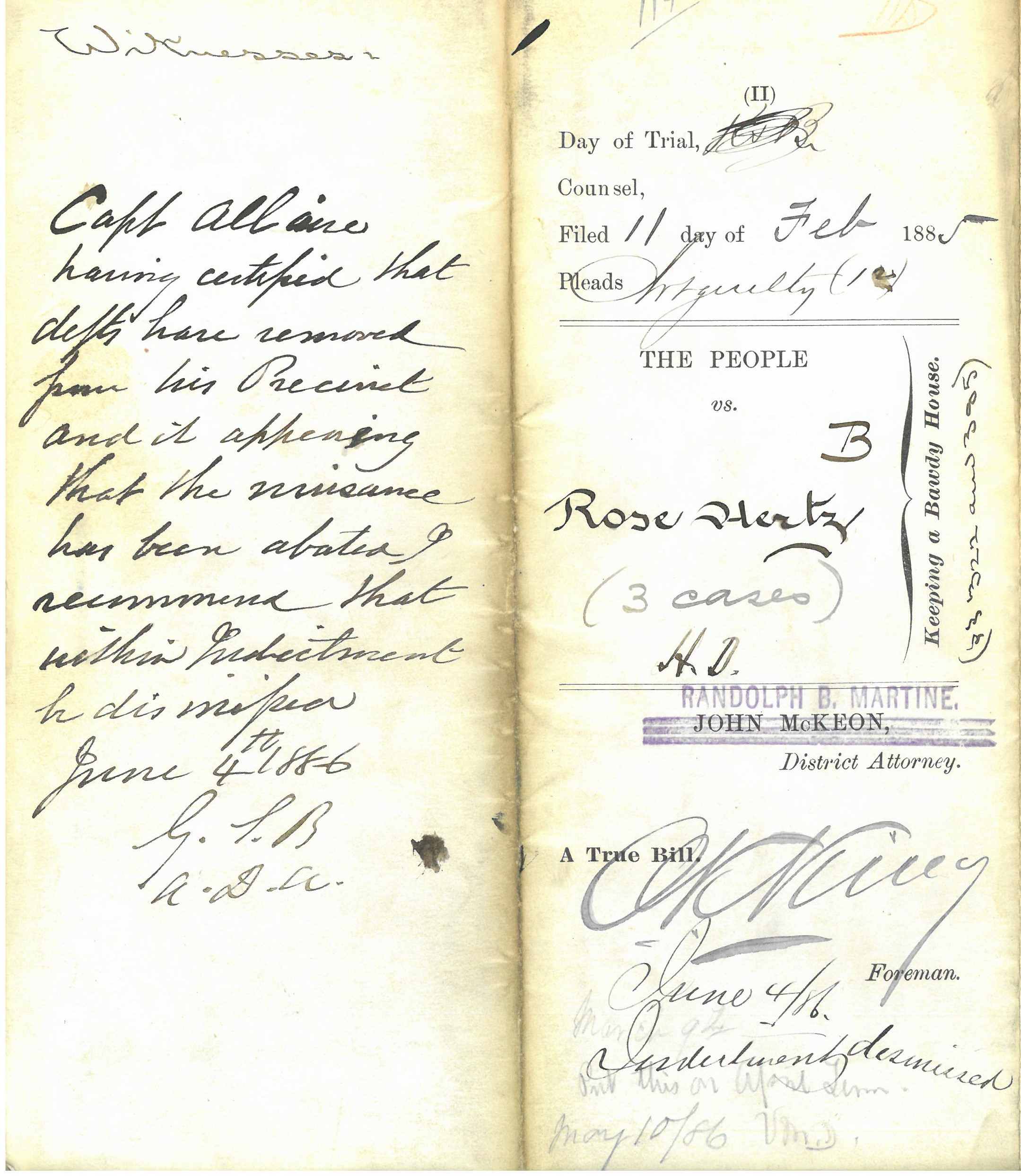 cropped Indictment - Rose Hertz 11 Feb 1885 - Ct. of Gen. Sessions Box 166 f. 1694.jpg