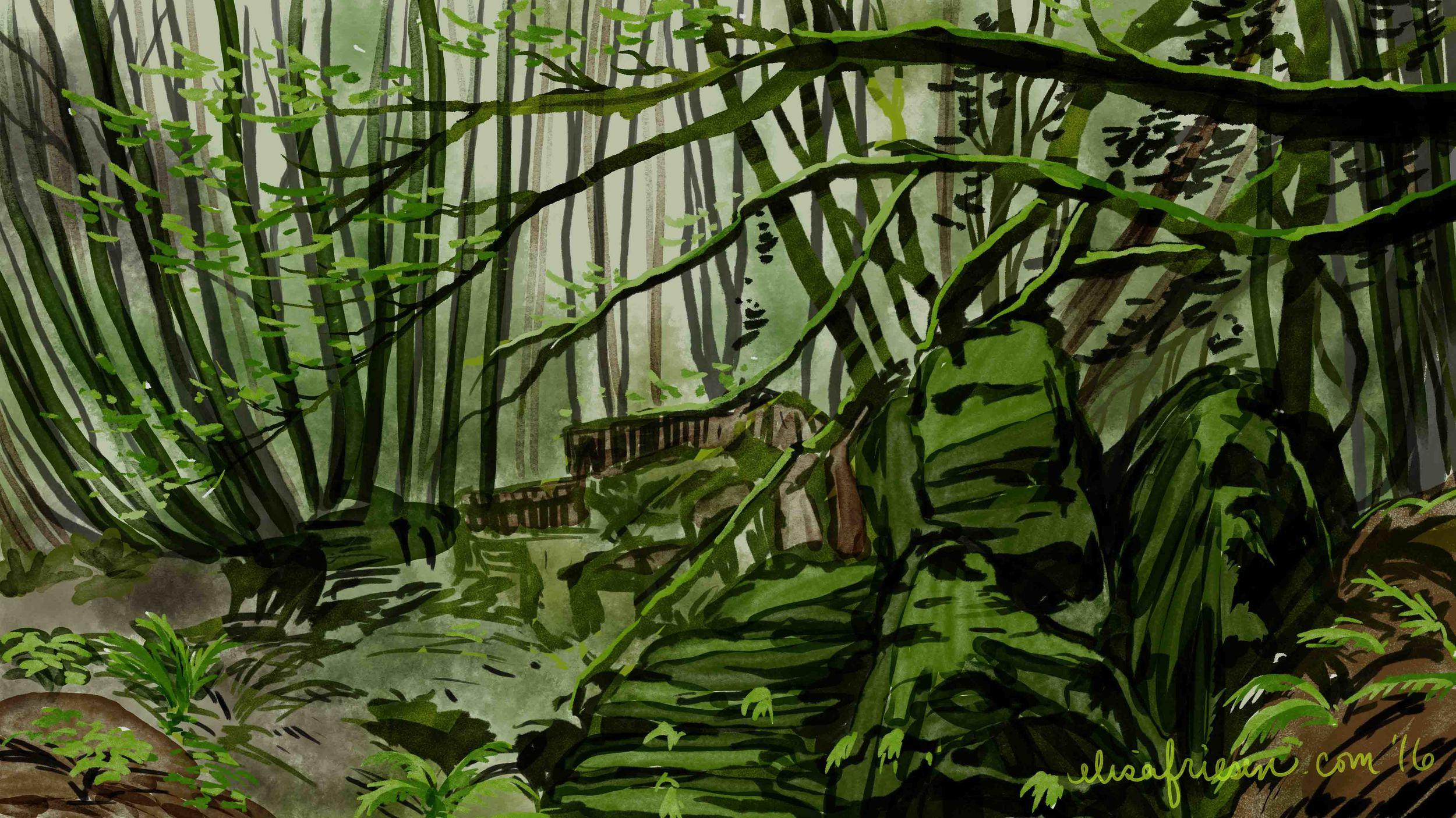 day 97 Puzzlewood Forest.jpg
