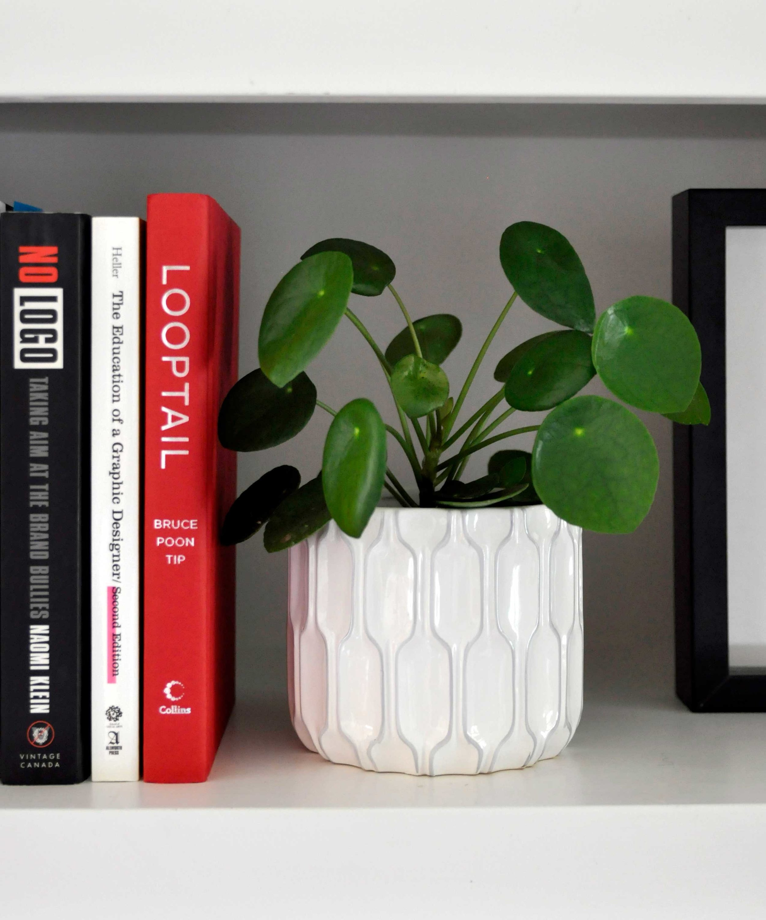 Style tip    - Add a variety of greenery and fun pots to your shelves.