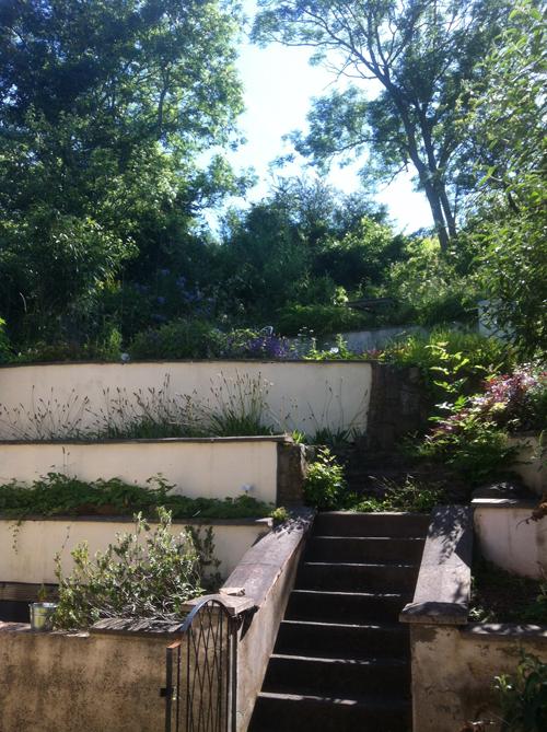 Garden clearing