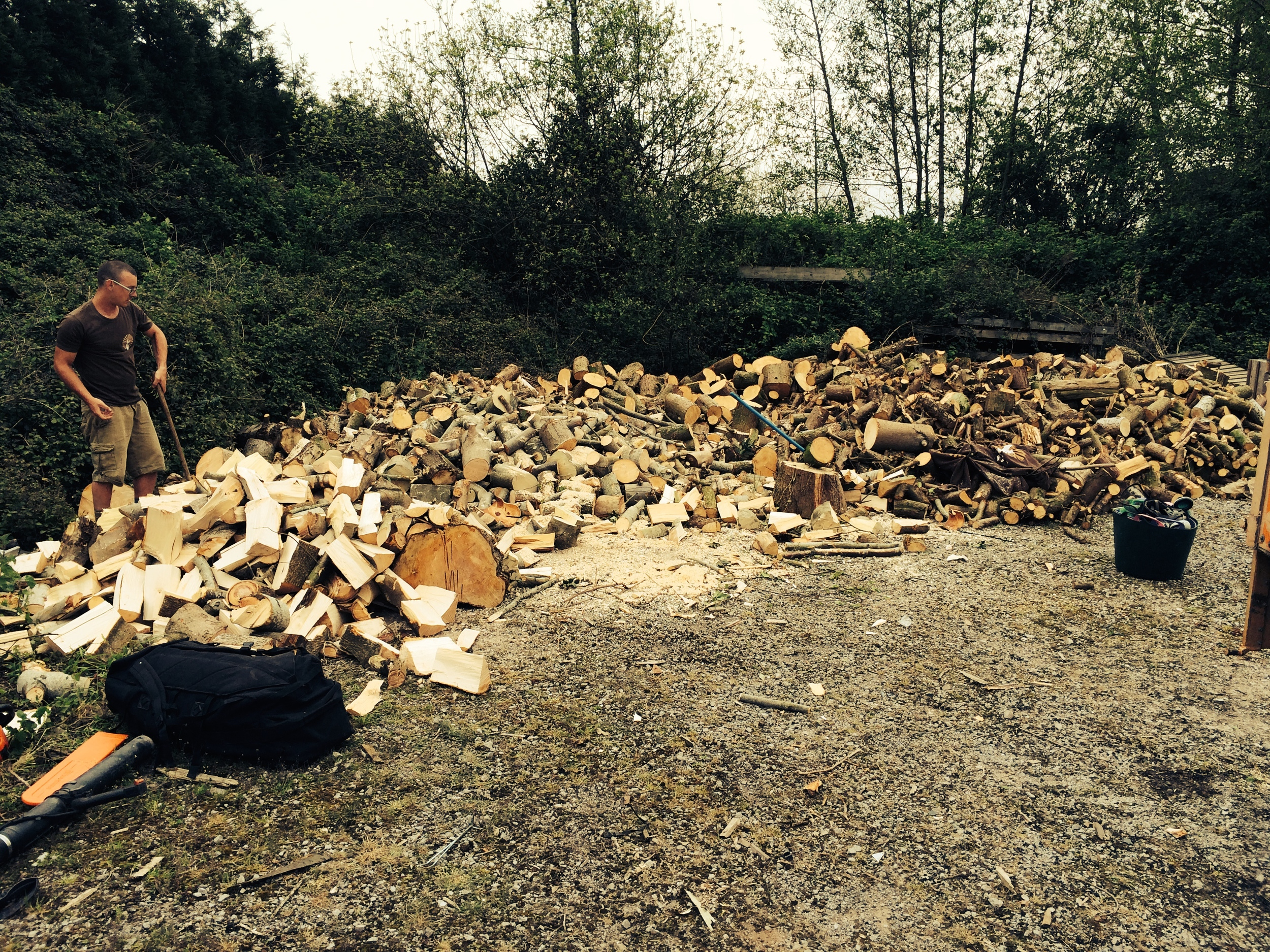Stove logs