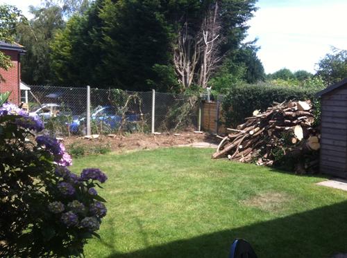 Open up the garden