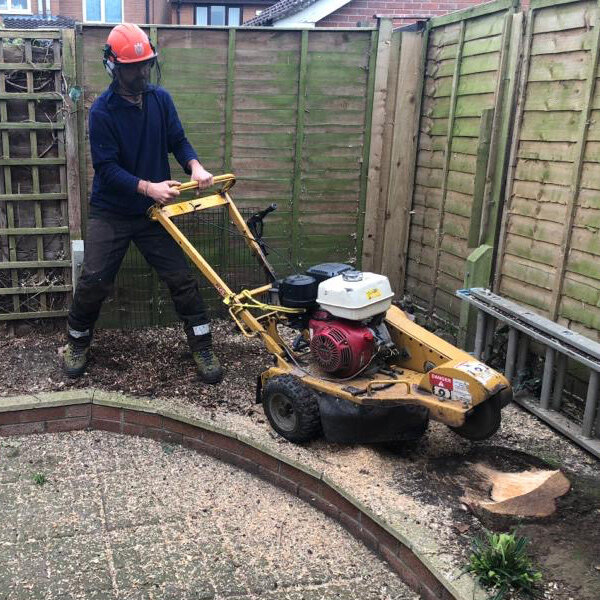 Tree Stump Removal Holroyd And