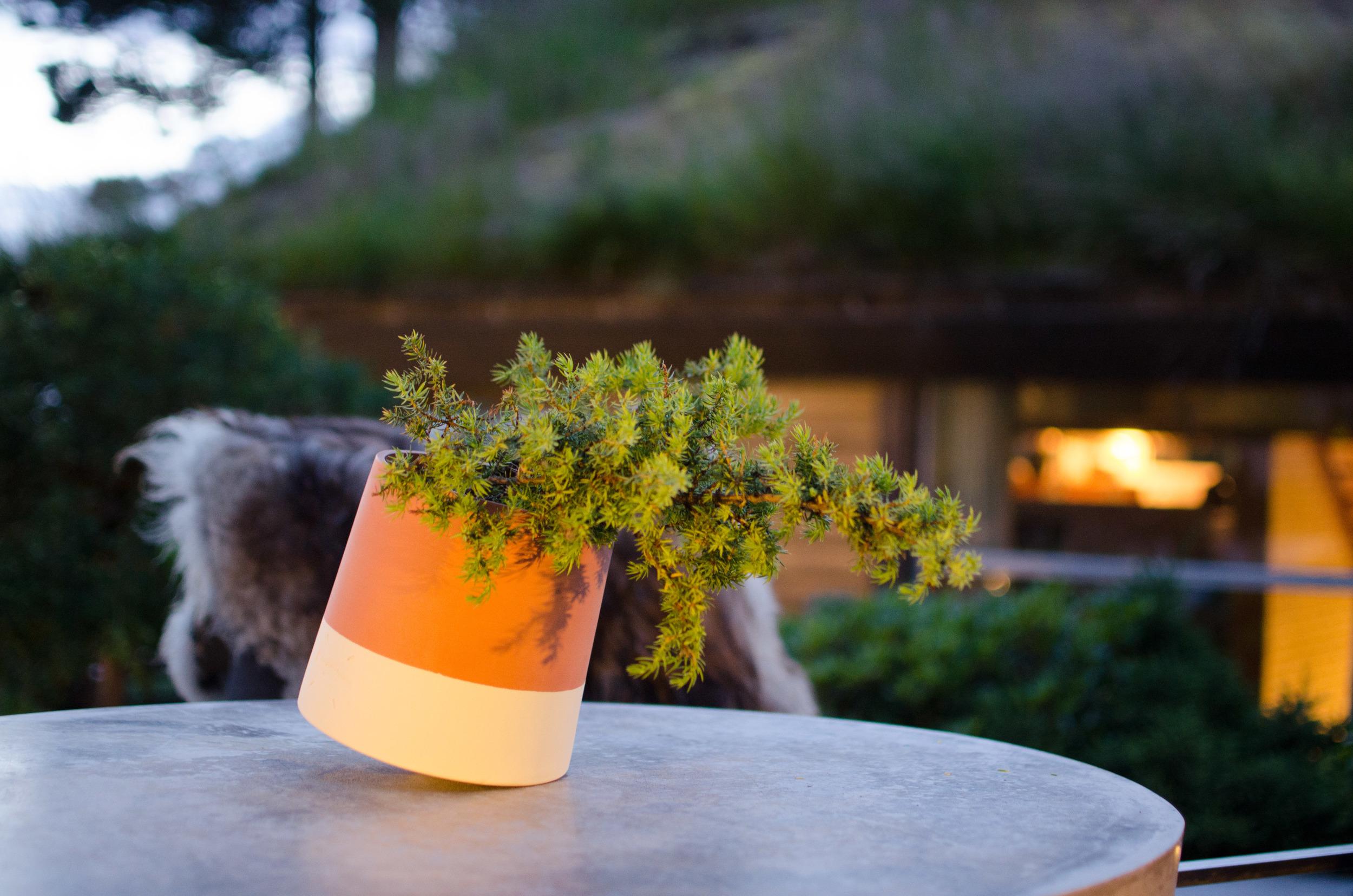 """Voltasol er hånddreiet terracotta fra Girona i nord-Spania. Den er ikke frostsikker og må tas inn på vinteren. Innsiden har en silikonbasert glasur som gjør at den ikke trekker til seg vann så fort, men for både planter og krukke anbefaler vi at plantene tas ut og får trekke eller at de vannes forsiktig. Terracotta er et naturmateriale og vil påvirkes av bruken. Etter en våt sommer kan den ha fått en noe mørkere patina enn når den er helt """"box fresh""""."""