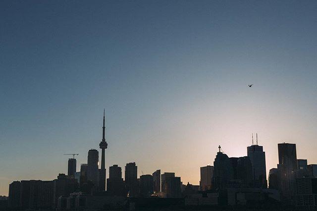 The Toronto skyline during golden hour 😍 . Shot by Nick Driver // @nickdriver . #artaniscollective #artanis #cntower #toronto #the6ix #goldenhour #vsco #canada #ontario #sunlight