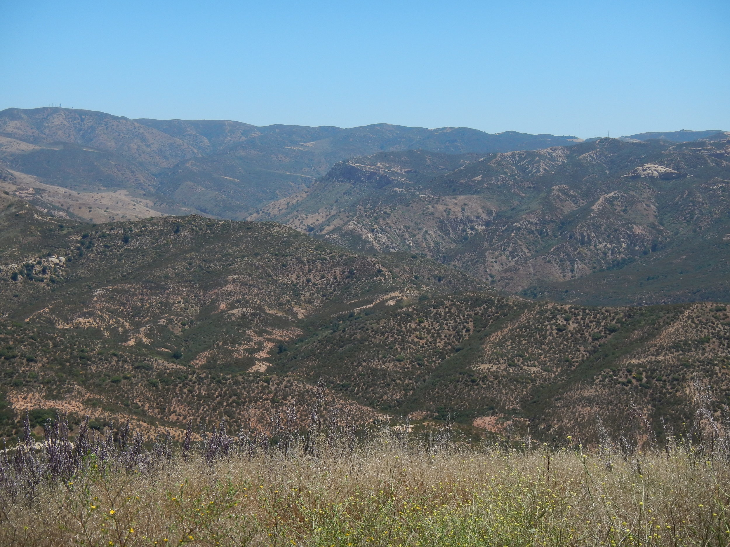 Overlooking Fremont and Black Star canyons (foothills of Santa Ana Mountains)