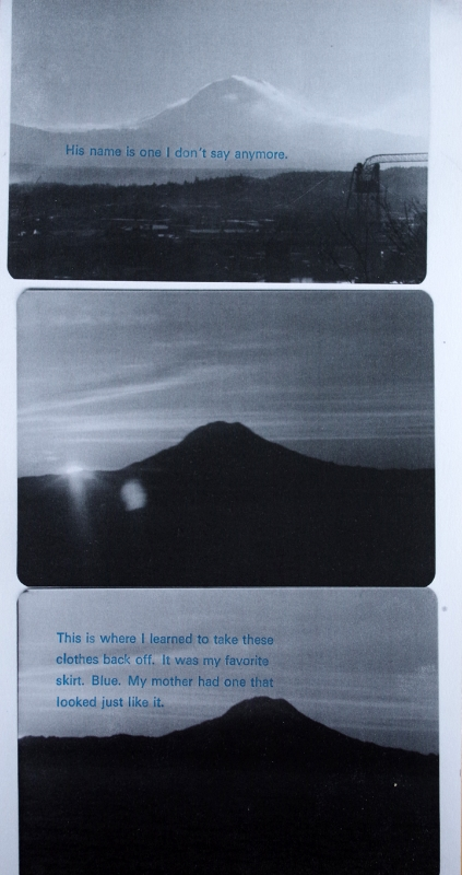 Laserjet print and letterpress. Collaboration with poet  Desiree Dallagiacomo  .