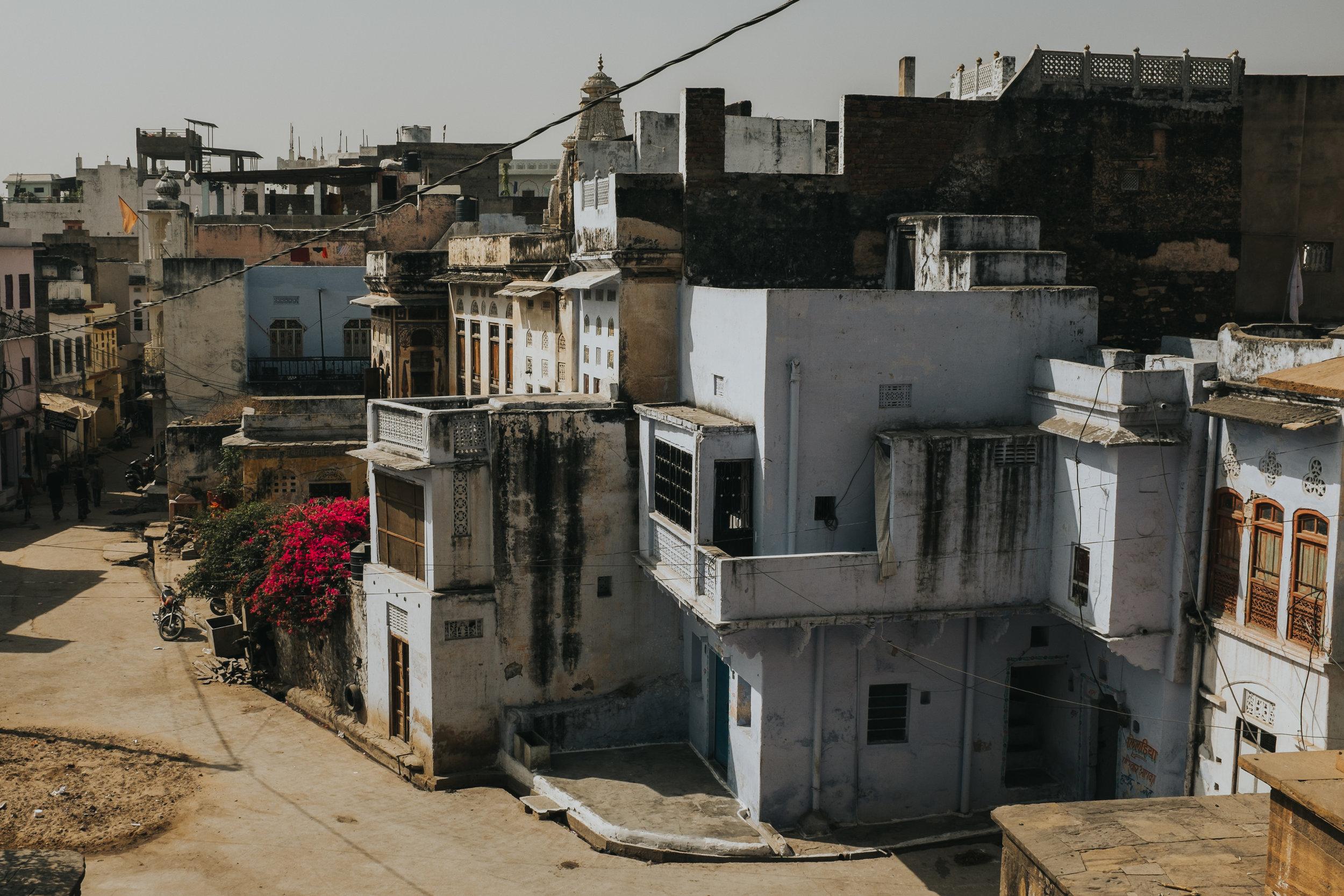 INDI2839.jpg