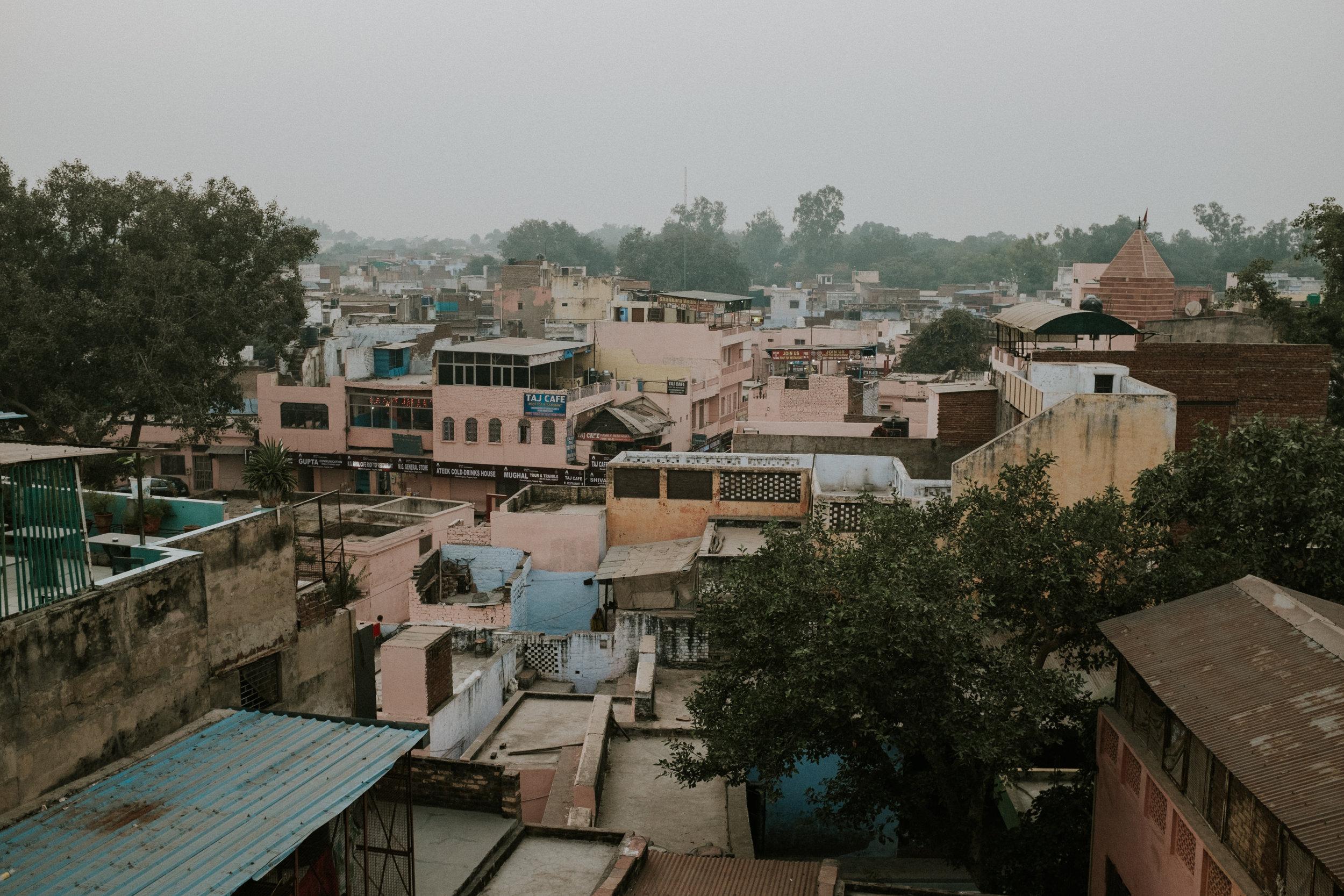 INDI3402.jpg