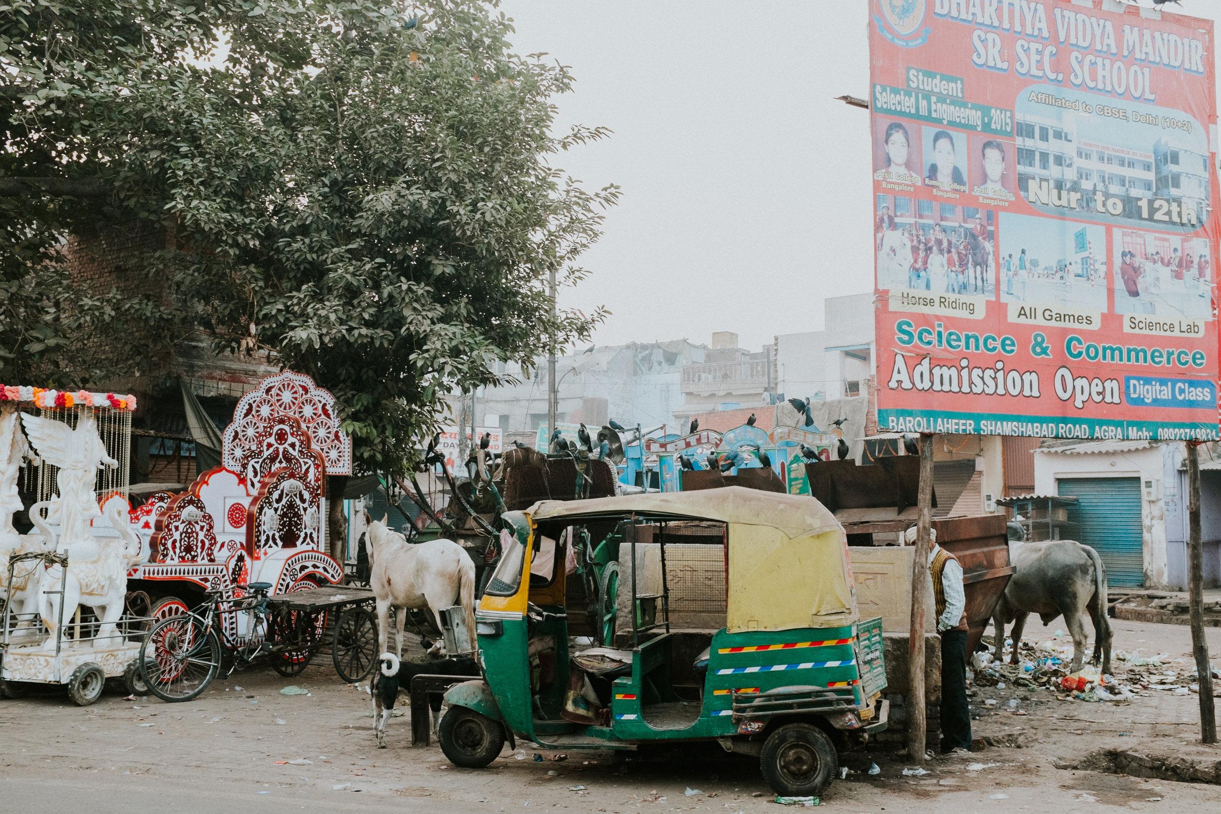 INDI3413.jpg